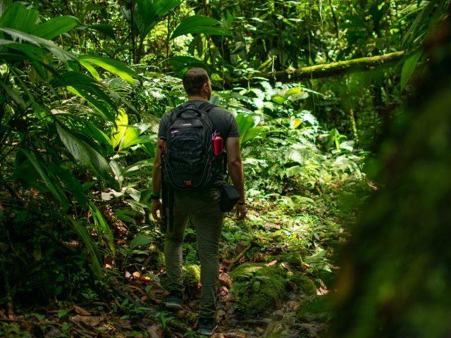 Ekoturizm Nedir?